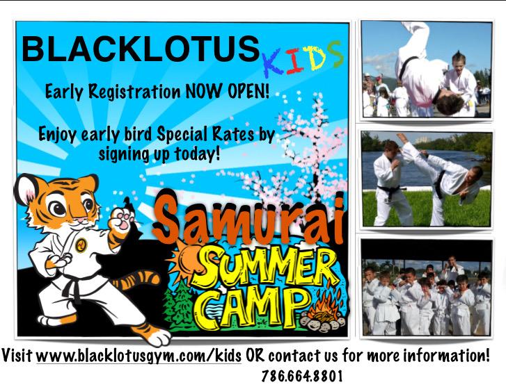 Samurai Summer Camp